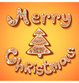 Merry Christmas gingerbread text sign vector image