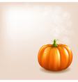 Orange Pumpkin With Bokeh vector image vector image