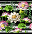 seamless pattern with waterlily hand draw vector image vector image