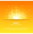 Shiny sun sunbeams sunrays bokeh vector image