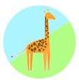 cartoon colorful giraffe icon vector image