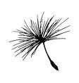 dandelion seed pencil sketch vector image