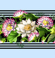 border with waterlily hand draw vector image