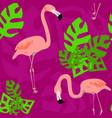 bright flamingo pattern seamless pattern vector image vector image
