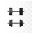 collapsible dumbbells equipment for bodybuilding vector image