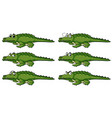 crocodile with different emotions vector image vector image