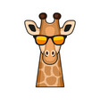 cute giraffe face with eyeglasses cartoon style vector image