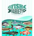 fish variety vector image