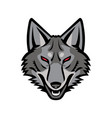 gray coyote head mascot vector image