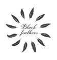 group of black feather on white background easy vector image