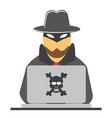 hacker vector image vector image