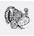 Hand-drawn pencil graphics turkey Engraving vector image