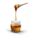 honey in a jar on a white background vector image vector image