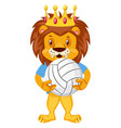 lion with volleyball on white background vector image vector image