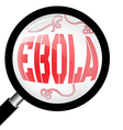 Magnifying glass with Ebola virus vector image