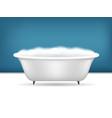 realistic detailed 3d bathroom bathtub with foam vector image vector image