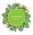 realistic tropical natural round concept vector image