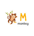 alphabet letter m and monkey vector image
