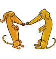 cartoon illustration of dachshund dogs in love vector image vector image