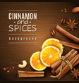 cinnamon and spices background vector image vector image