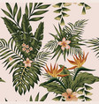 exotic composition flowers and plants vector image vector image