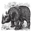 Rhinoceros vintage engraving vector image vector image