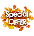 autumn special offer background with leaves vector image vector image