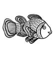 Clownfish vector image