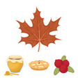 cranberry pumpkin pie honey pot maple leaf vector image