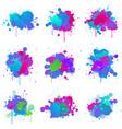 paint splash colors fluo vector image