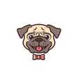 smiling pug dog smile cartoon logo mascot vector image vector image
