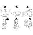 black and white zodiac signs set with dogs vector image vector image