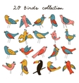 PrintCute collection of funny birds vector image vector image