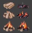 campfire flame outdoor camping realistic vector image vector image