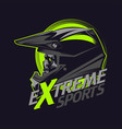 extreme sport skull vector image vector image