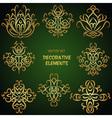 Gold festive ethnic decorative elements vector image