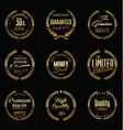 golden laurel wreath collection premium quality vector image vector image