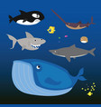 inhabitants seas and oceans vector image vector image