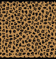 leopard print seamless pattern background vector image vector image