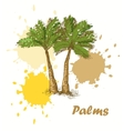 palms background vector image vector image