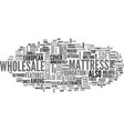 wholesale mattress text word cloud concept vector image vector image