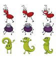A spider a chameleon and an ant vector image vector image