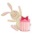 colorful christmas bunny with present vector image