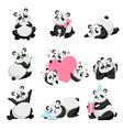 cute happy baby panda bear set lovely animal vector image