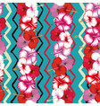 exotic stripes flowers hibiscus zigzag vector image
