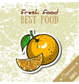 Healthy Food Orange vector image vector image