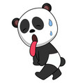 tired panda on white background vector image vector image