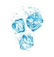 water ice cube icon frozen melting water vector image