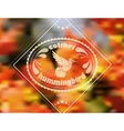 Blurred floral patterned hummingbird vector image vector image