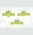 cbd marijuana herbal healing banner vector image